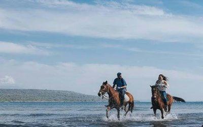 Horseback Riding Bali