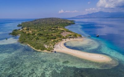 Die Insel Menjangan